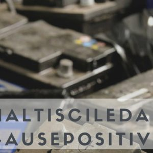 Smaltiscile da Noi, crea Cause Positive