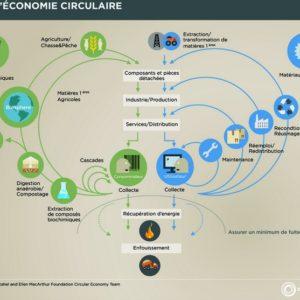 la circolre economia